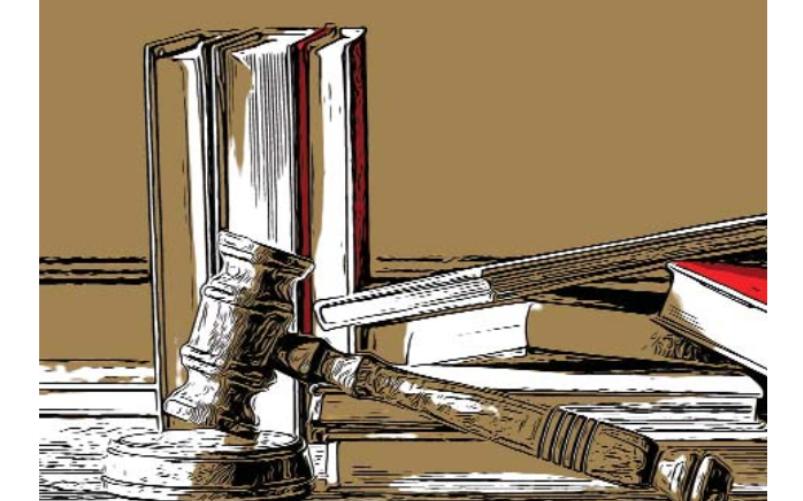 Giurisprudenza e magistratura